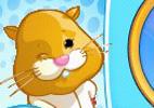 ZhuZhu Pets: Wild Bunch
